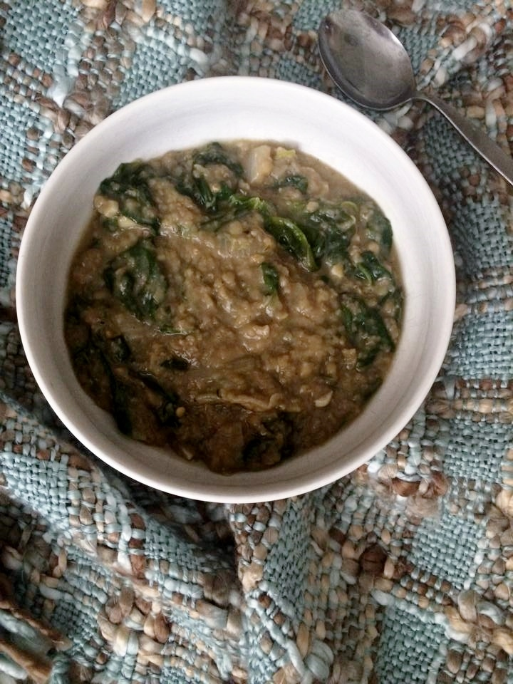 fdblogger-vegetarian-lentil-soup-recipe