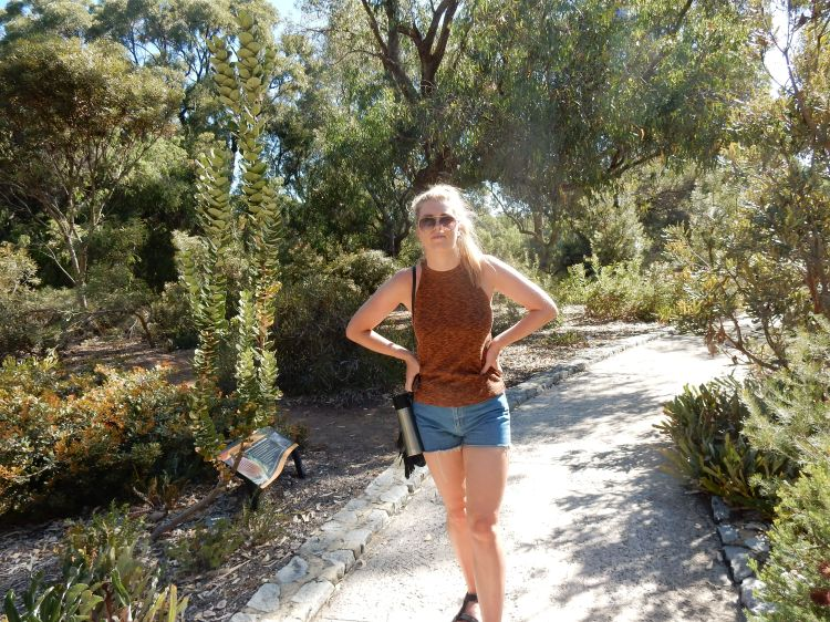 things-to-do-in-perth-kings-park