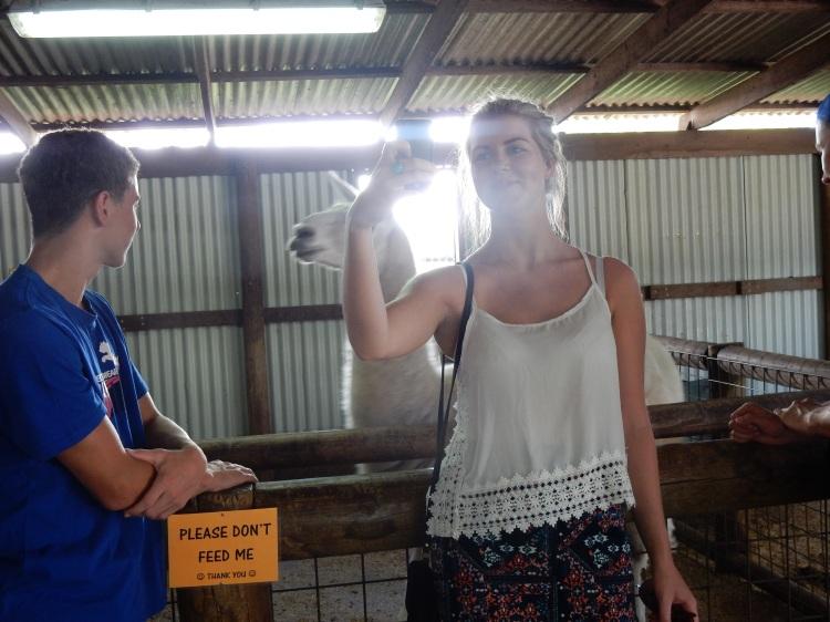 travel-blogger-australia-perth-zoo