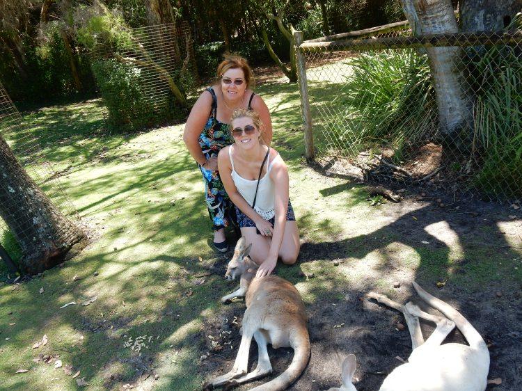 travel-blogger-kangaroos
