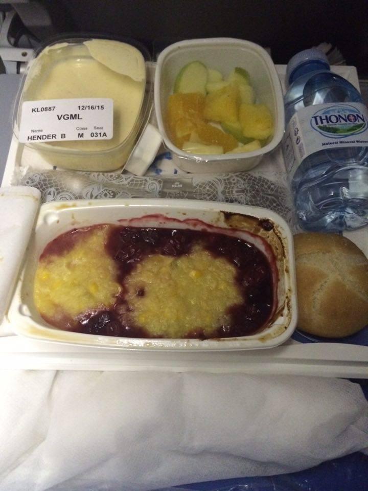 travel-blogger-vegetarian-plane-food